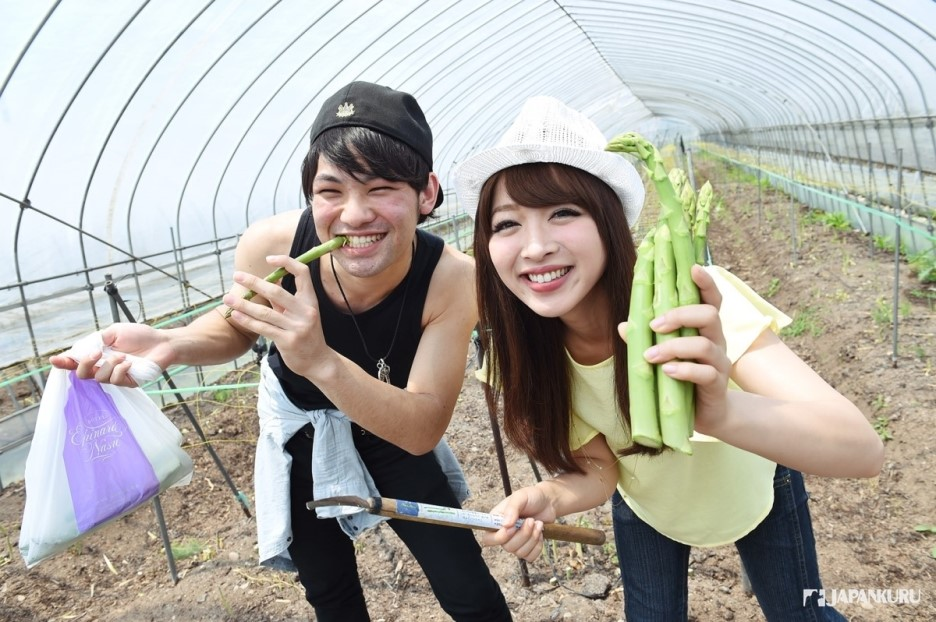 Experience of picking bamboo shoots!
