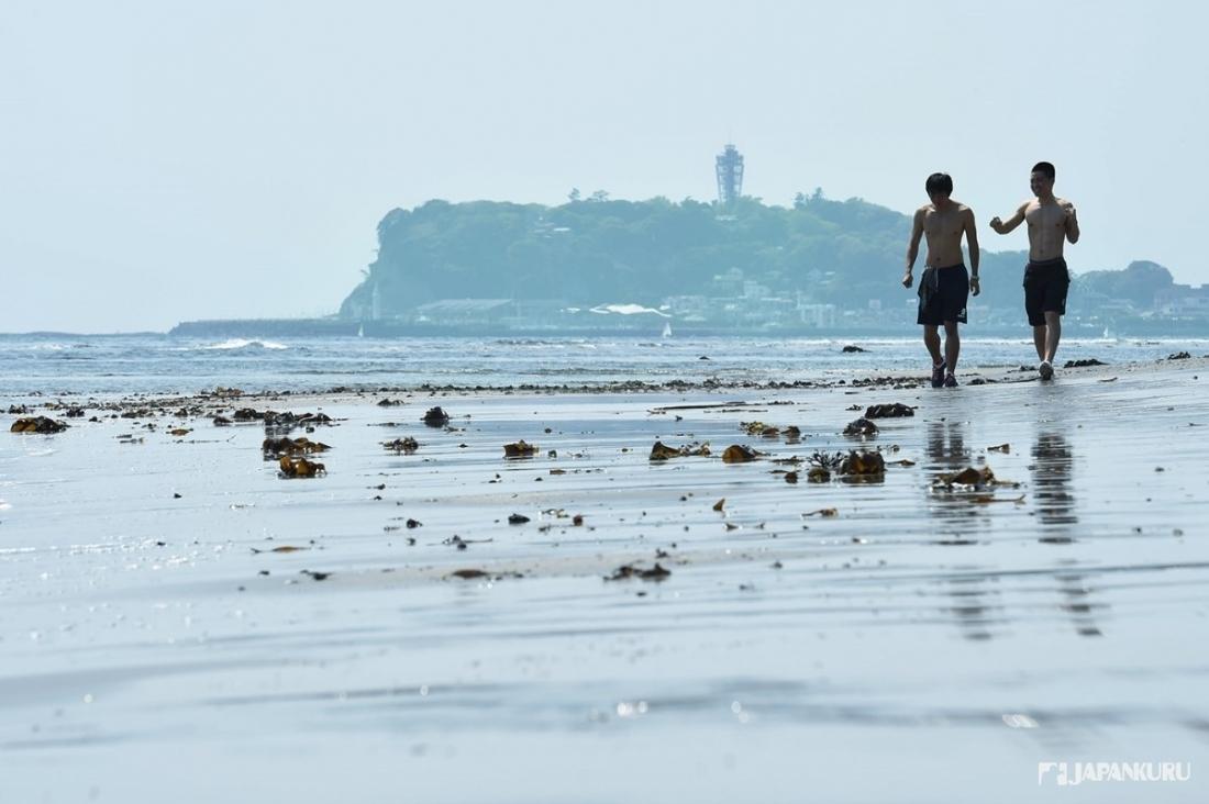 美丽的海岸