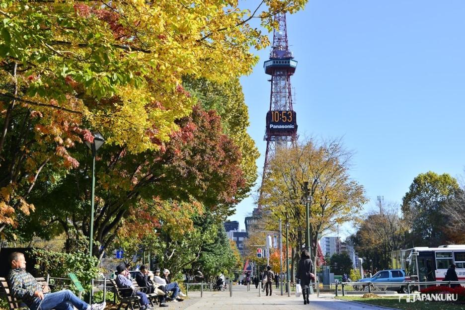 # Sapporo Odori Park and Sapporo TV Tower