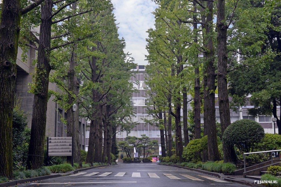 Musashino University