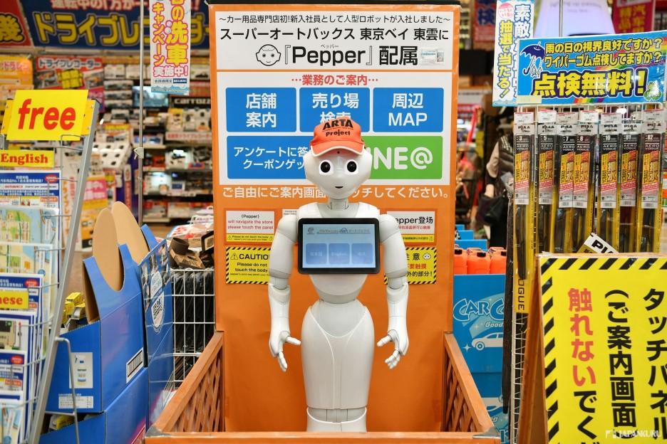 Intelligent robots