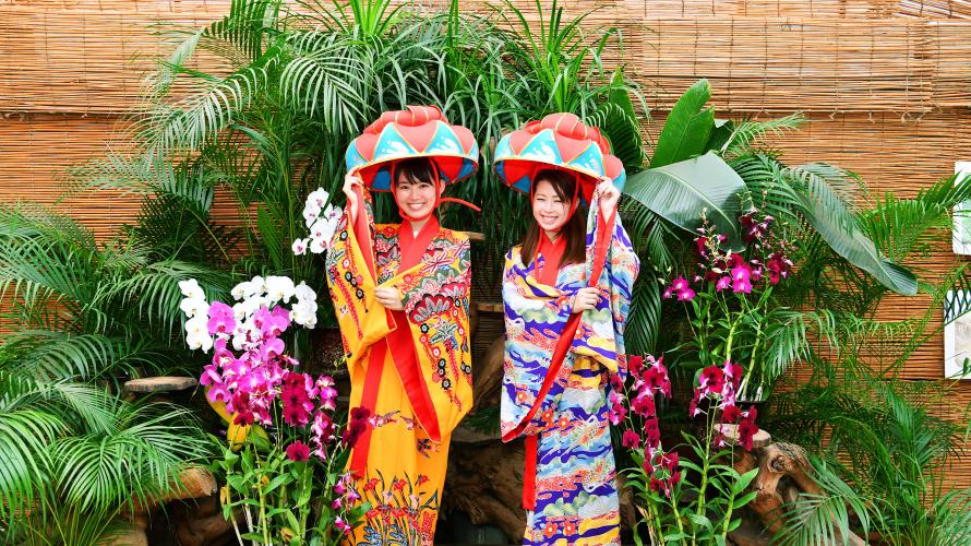 Hill of Bios! Một công viên nơi bạn có thể khám phá cận cảnh rừng Okinawa!