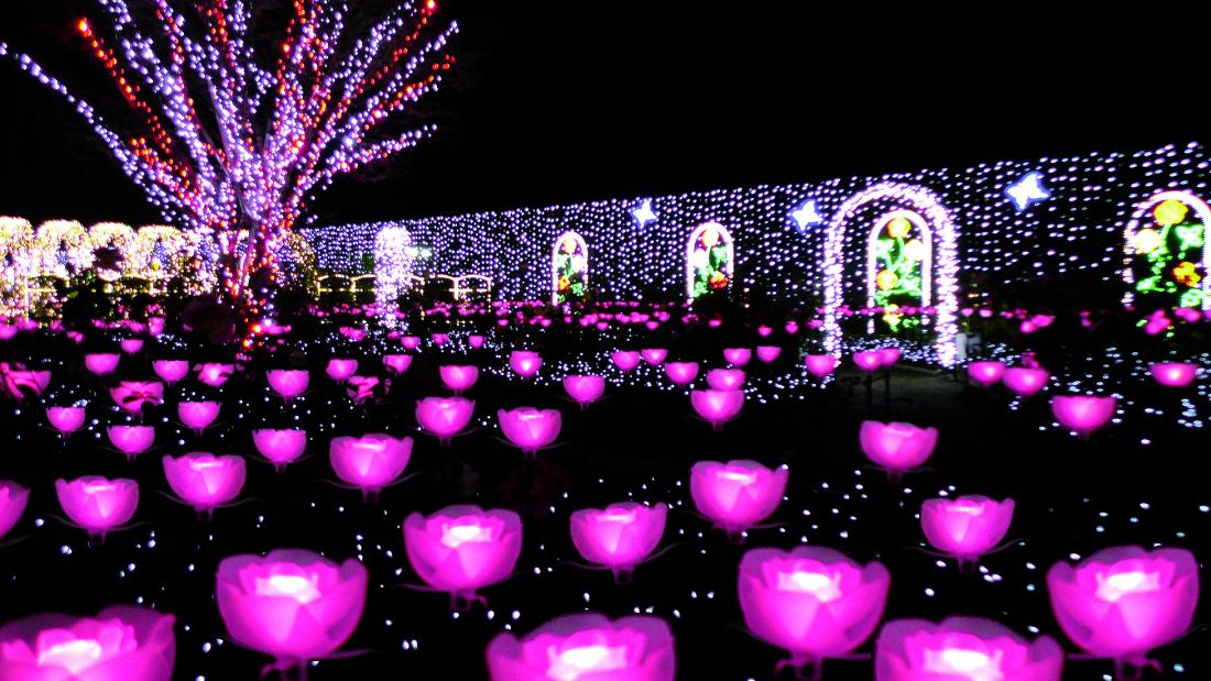 光之玫瑰園