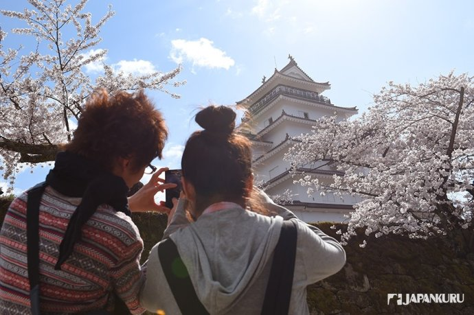 Famous Spot for Seeing Cherry Blossoms in Fukushima