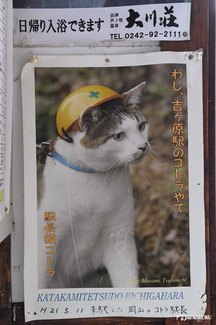 Fellow feline stationmaster, Kotora! This part tabby kitty patrols Kichigahara Station.