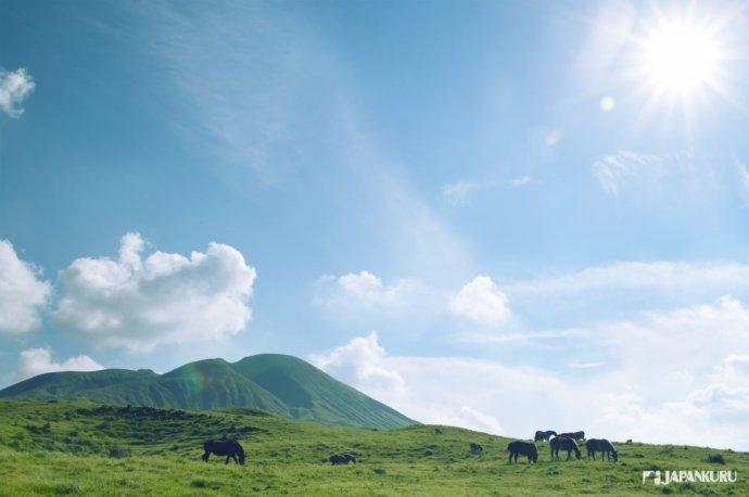 令人心曠神怡的廣闊草原 草千里