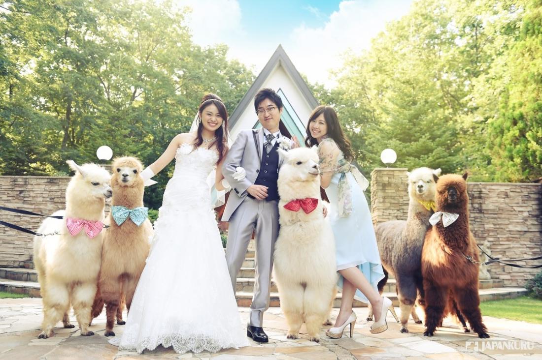 Happy Wedding Day♬