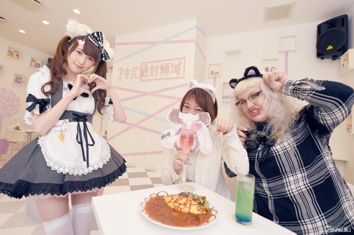以猫为主题的女仆咖啡店  AKIBA绝对领域