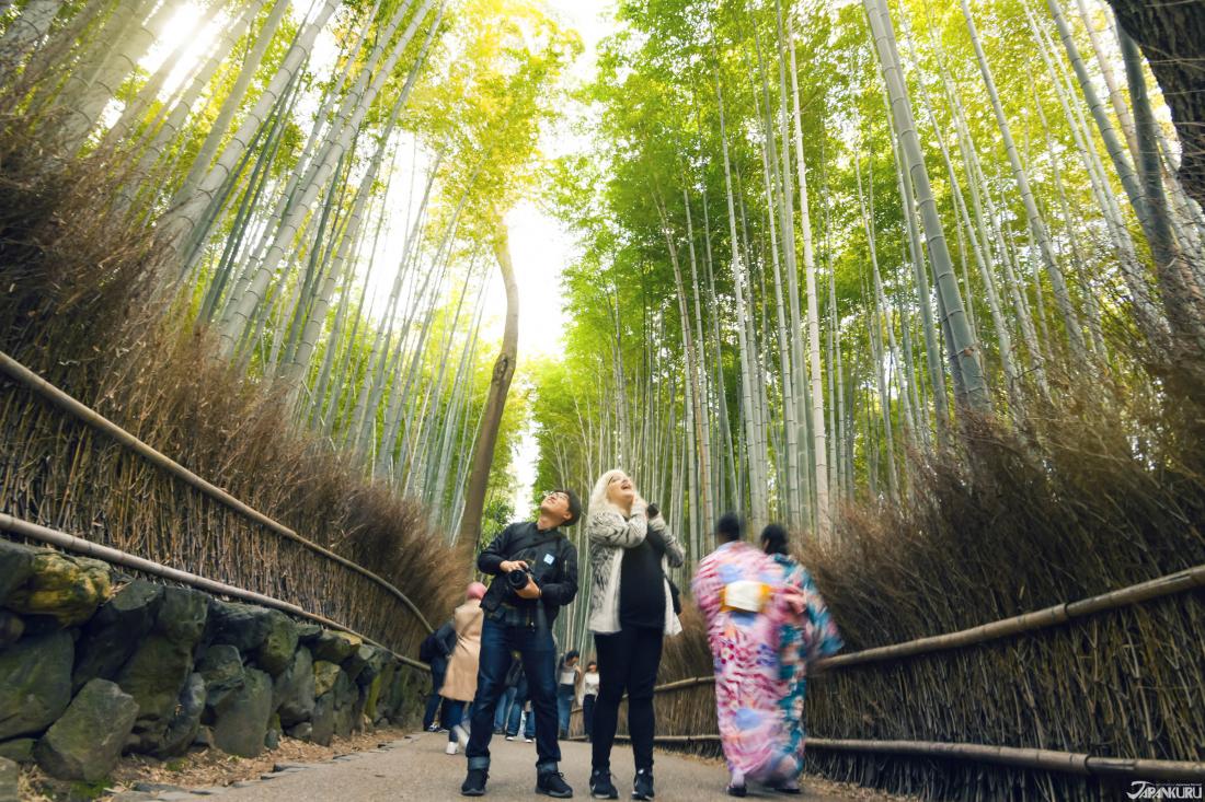 아라시야마 (嵐山)