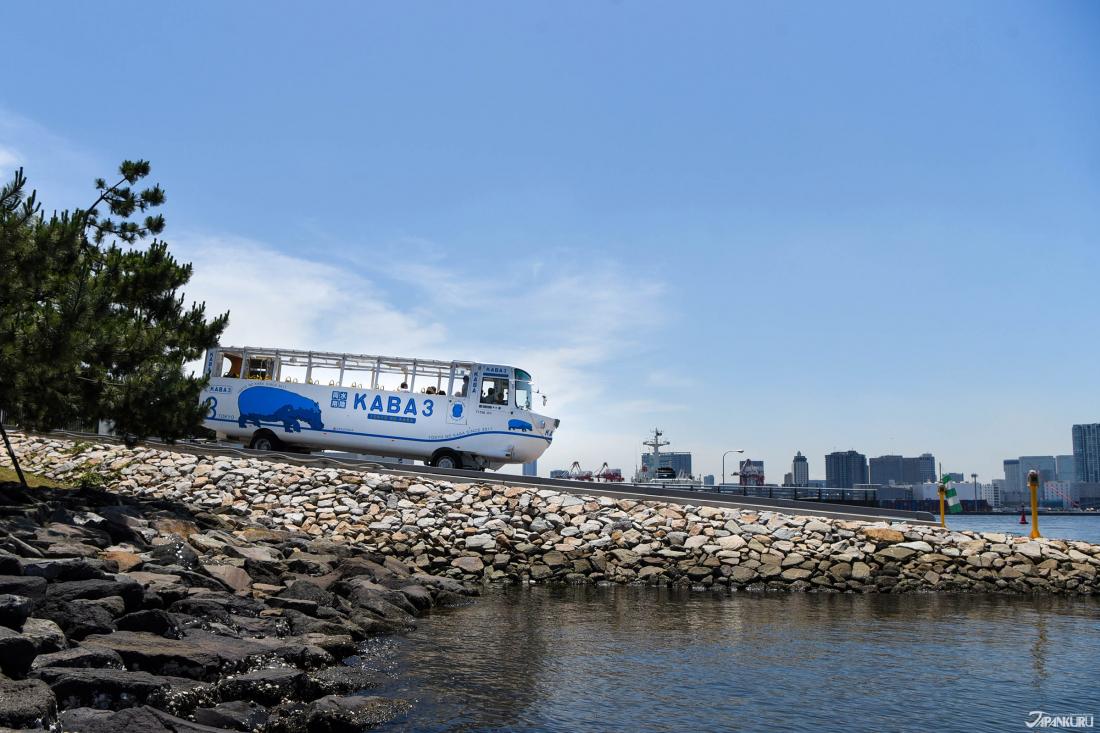 ※ 바다로 뛰어드는 카바 버스