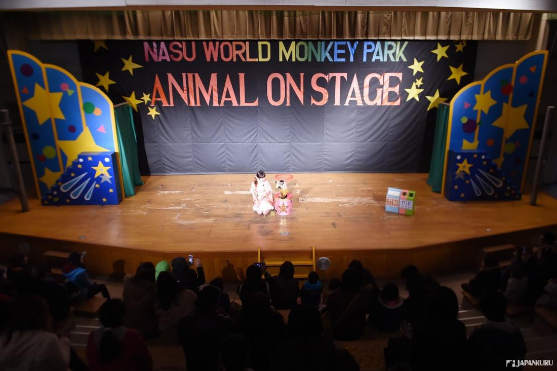 ห้องจัดแสดงลิง (Monkey Playhouse)