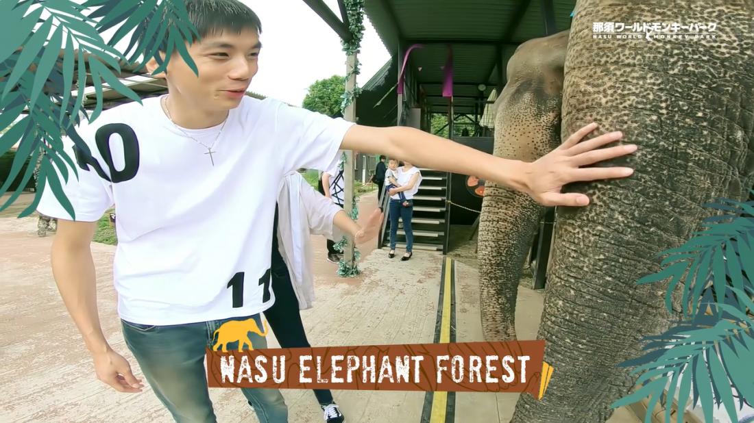 Nasu Elephant Forest (ゾウの森)