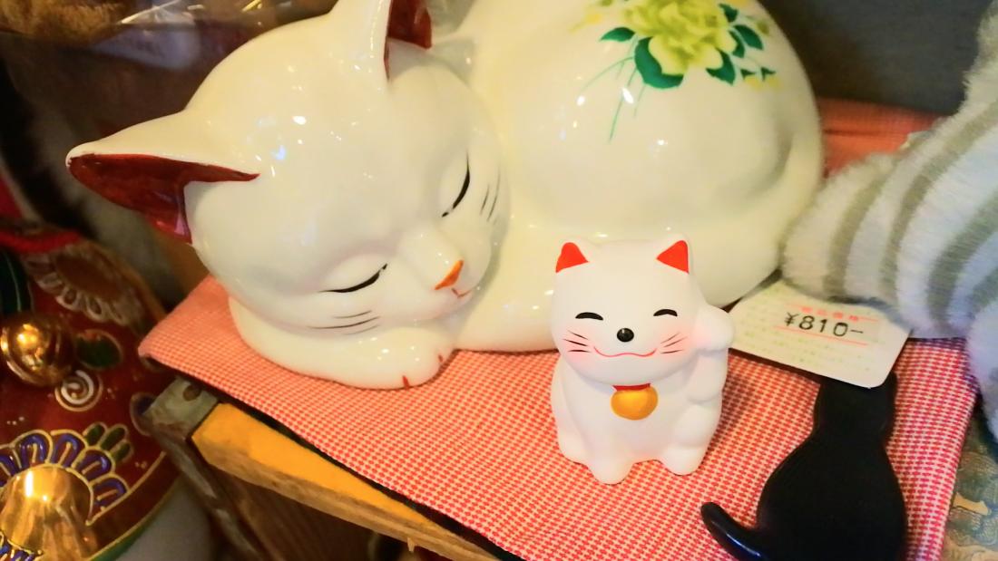 各種不同貓咪的商品
