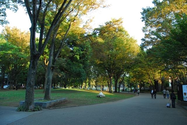 上野公園可不是只有公園!