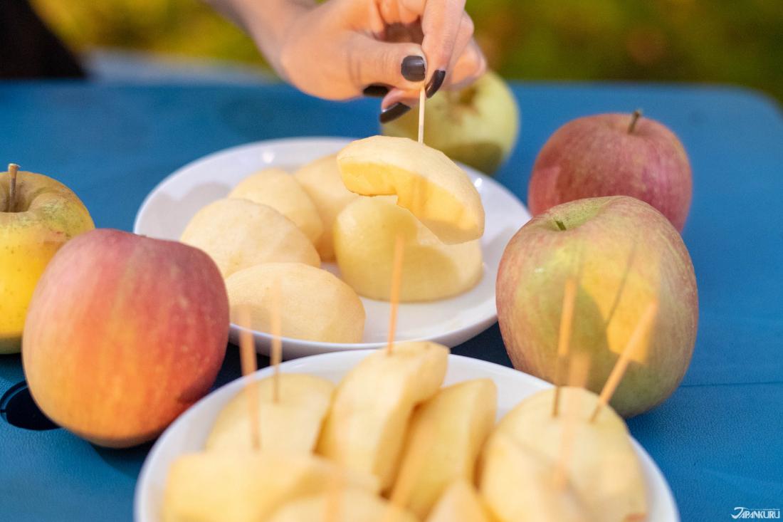 Thật thích khi chúng mình đi đúng dịp mùa táo! Và ăn tất cả những quả táo thơm ngon chỉ với 500yen!