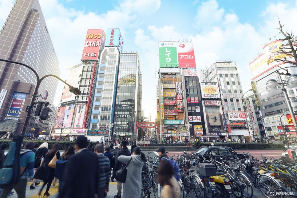 东京的中心区!「新宿」 一日游指南!