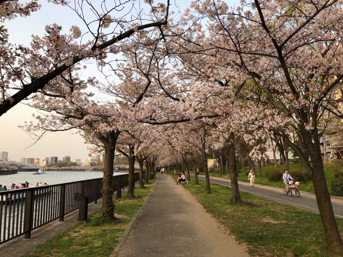 河堤是大阪市民的日常休閒場所