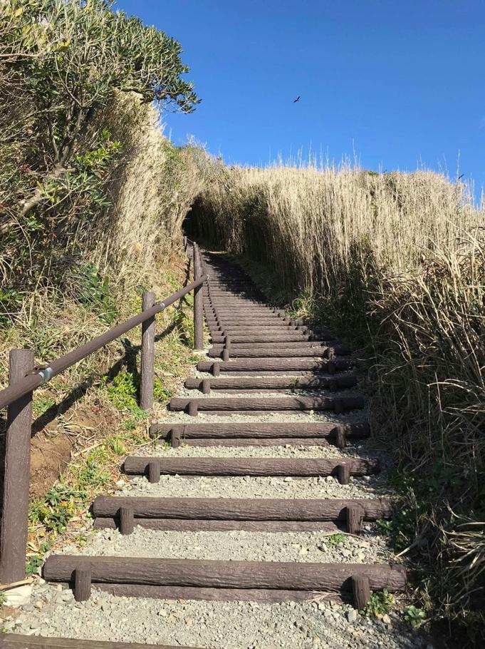 Lối đi dẫn ra biển