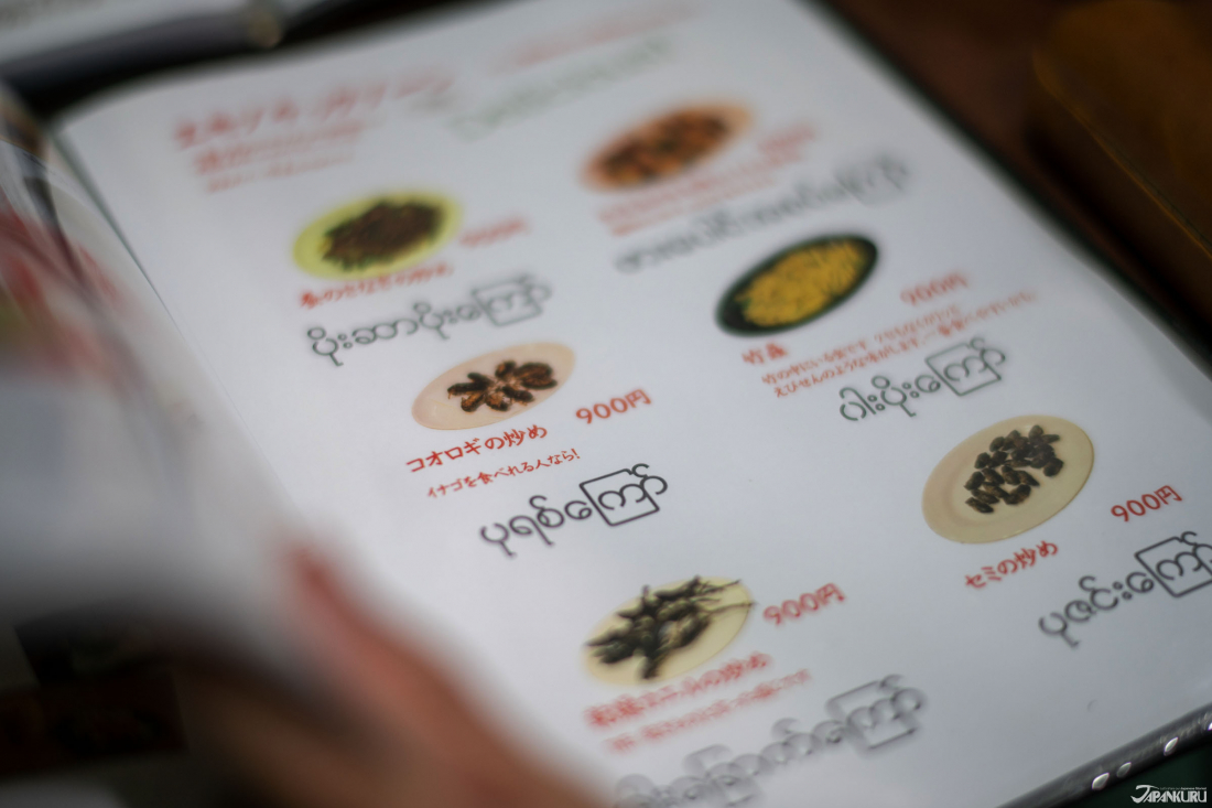 看到菜單嚇了一大跳——店內提供的「蟲蟲料理」,包括毛毛蟲、蟋蟀、青螞蟻、幼蟲等。