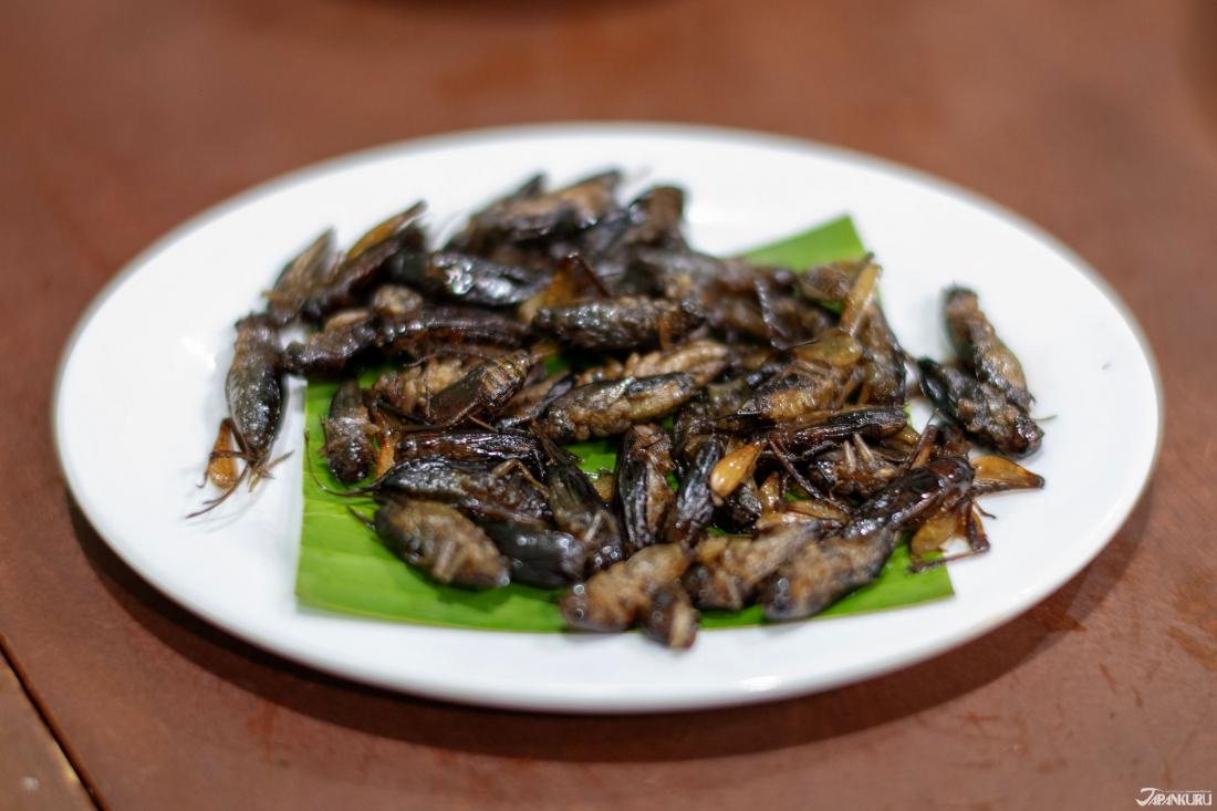 炒蟋蟀(コオロギの炒め) 900日圓