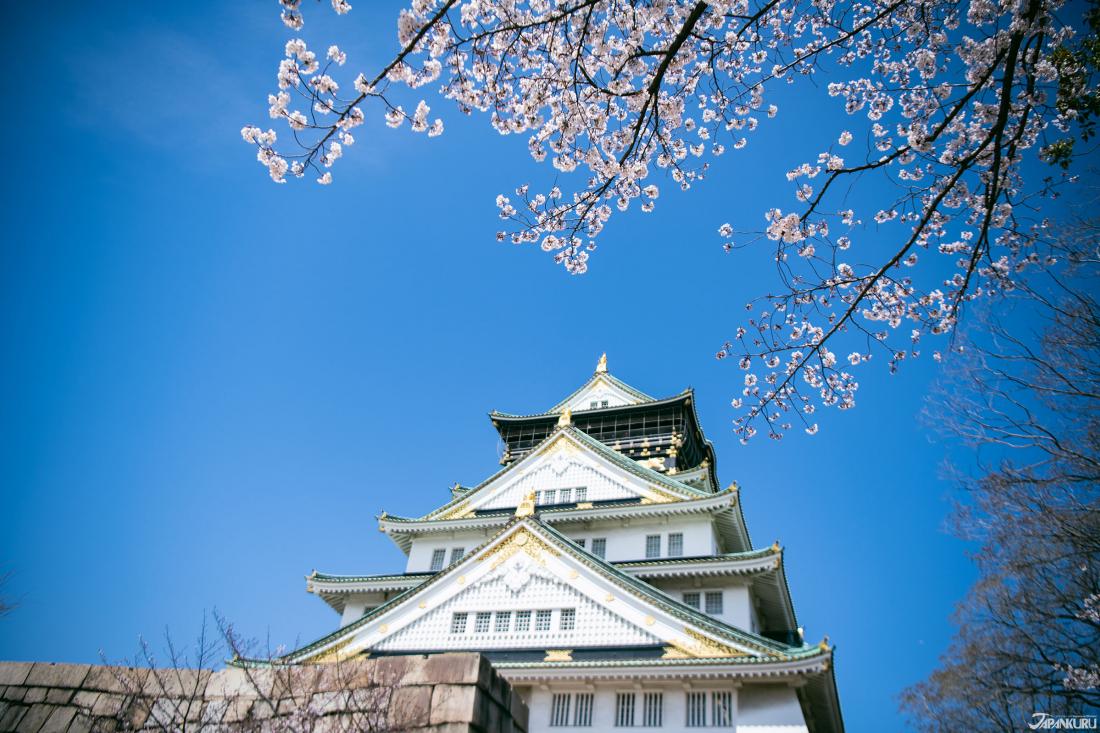穿越時空的春櫻「大阪城」