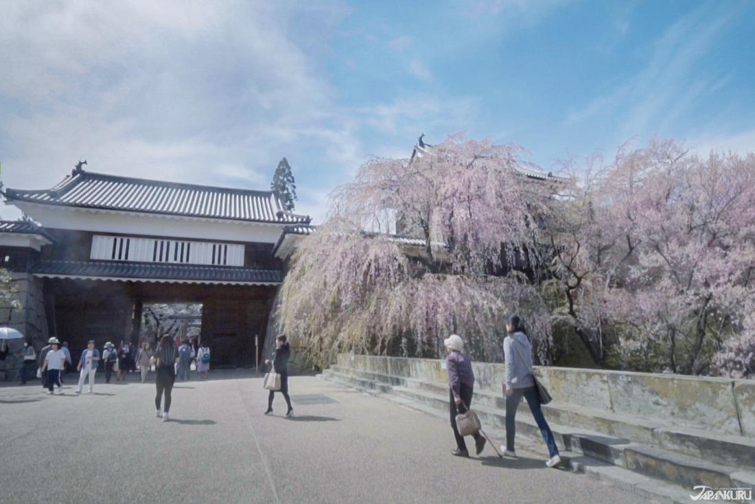 벚꽃시즌의 우에다 성