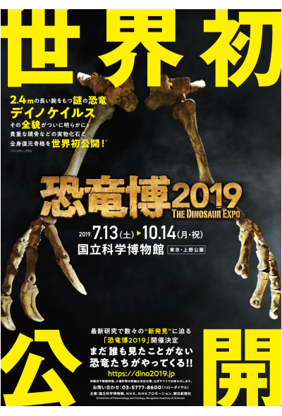 For dinosaur lovers of all ages, this exhibition focuses on the history of paleontology and the dinosaur discoveries happening right here in Japan. This includes Japanese mosasaurs and incredible fossils discovered on the island of Hokkaido.