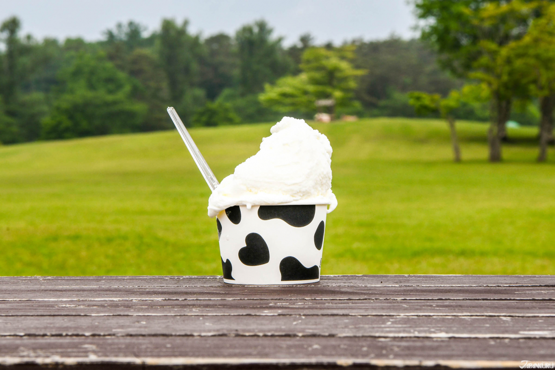 This Milky Ice Cream in a Cute Cow Cup is Insta-Certified