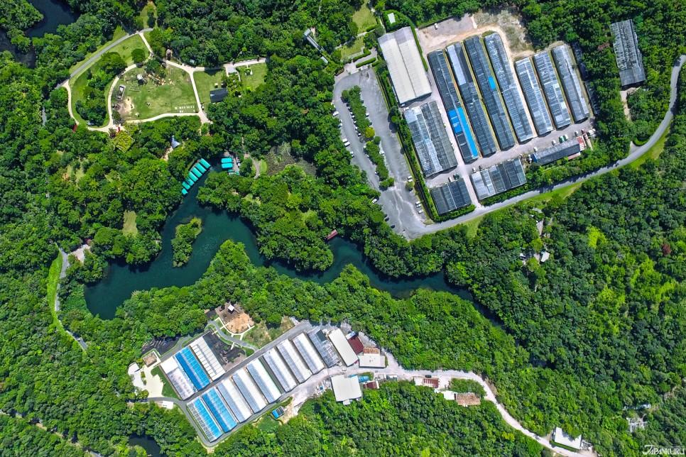 용모양의 호수 오타츠이케(大龍池)