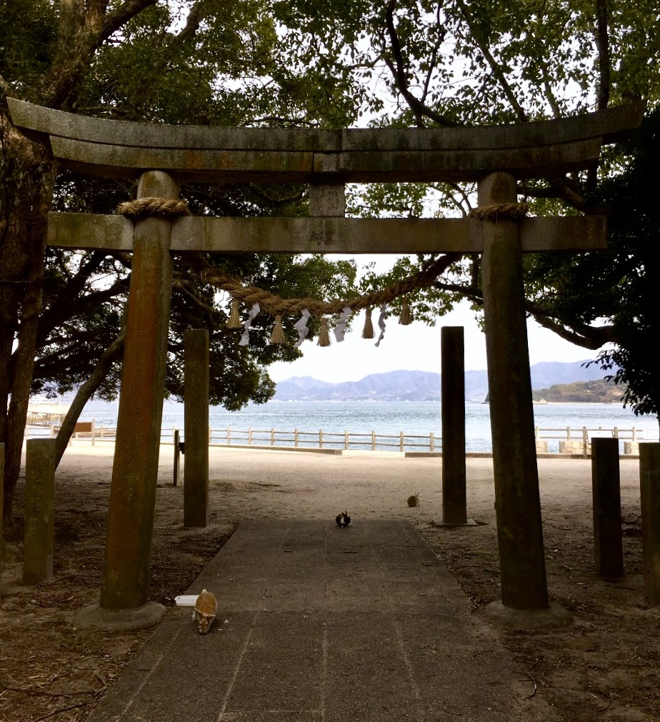 Wander Into the Okunoshima Shrine