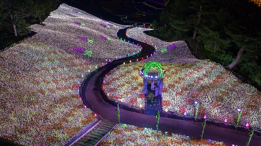 Champs de tournesols et spectacle de lumières: APA Resort Joetsu-Myoko à Niigata vous en...