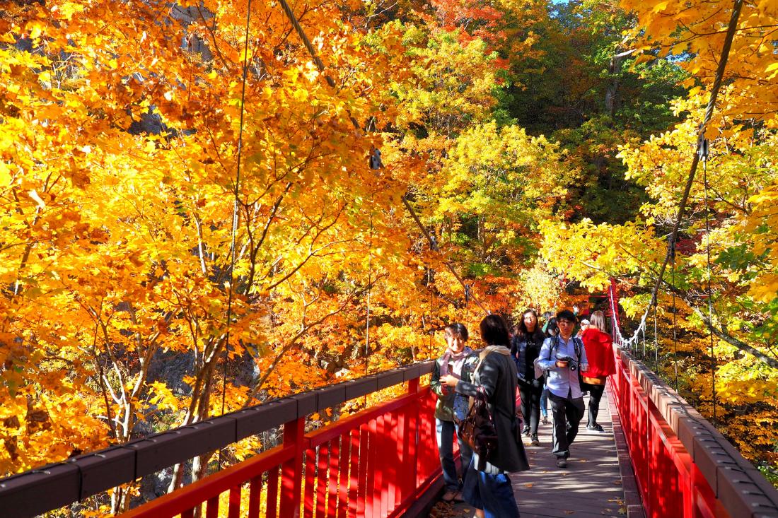 조잔케이 국립공원의 후타미 현수교(二見吊橋)