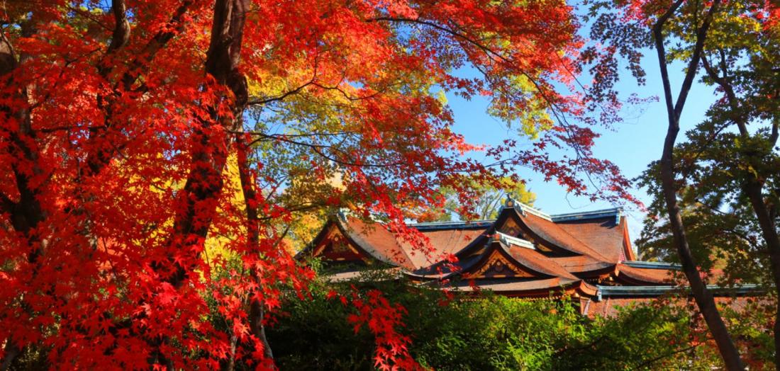 北野天滿宮(京都)