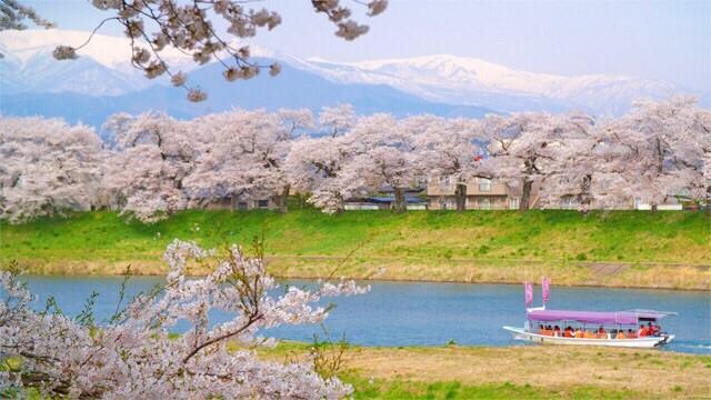 Hình ảnh: En.re-tohoku.jp