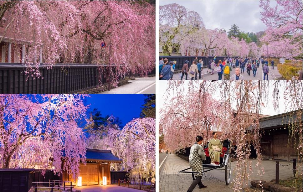 Hình ảnh: Nippon.com