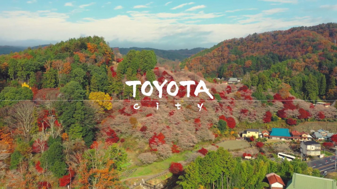 Finding the Fall-Blooming Cherry Blossoms and Brilliant Red Maples of Toyota City