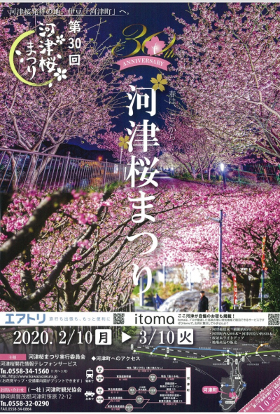 Kawazu Cherry Blossom Festival 2020
