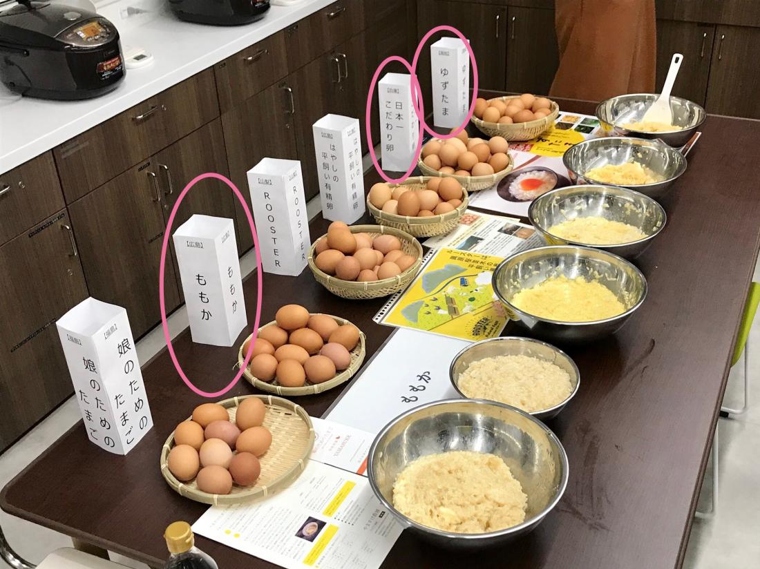 日本生雞蛋拌飯研究所過去的活動照片