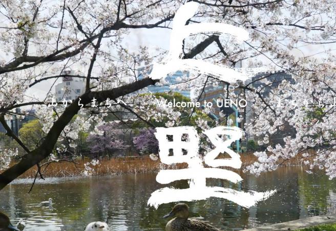 Ueno Sakura Matsuri (Ueno Cherry Blossom Festival) (Tokyo)