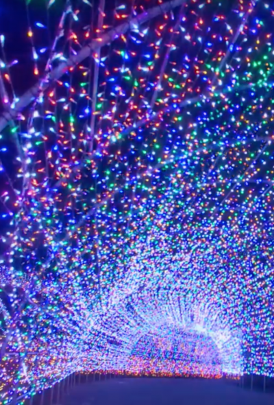 Yomiuriland Jewellumination Light-Up - 2019 - 6.5 Million Holiday Lights (Tokyo)