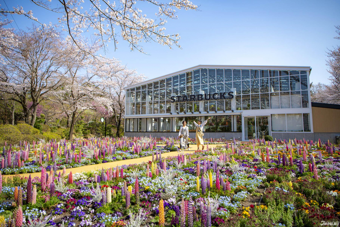 Yomiuriland's Hana-Biyori Has Flowers, Projection Mapping, Otters, and Japan's First Botanical Garden Starbucks | JAPANKURU | - JAPANKURU Let's share our Japanese Stories!
