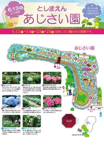 Toshimaen Hydrangea Festival 2020 (Tokyo)