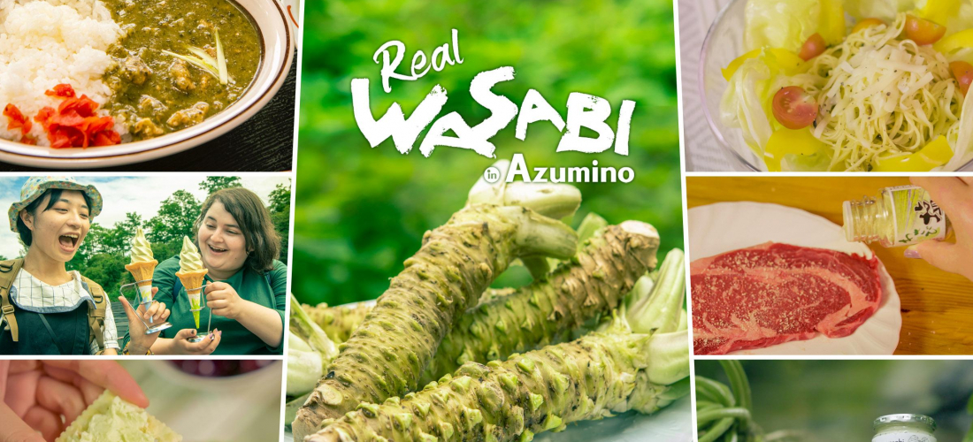 Real Wasabi in Azumino! This Japanese Flavor Can Liven Up All Kinds of Cooking