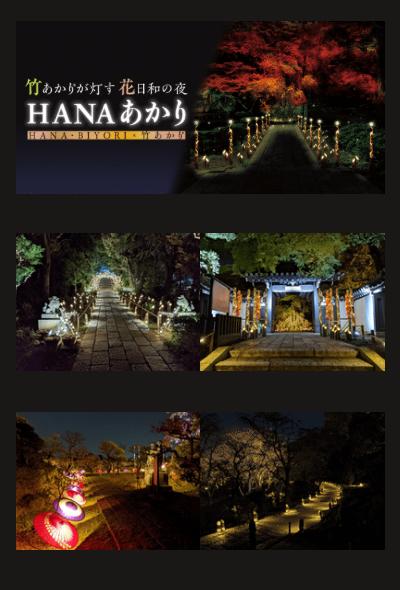 Hana Akari ~ Take Akari ga Tomosu Hana Biyori no Yoru ~ (Holiday Lights, Tokyo)