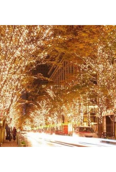Marunouchi Illumination 2020 (Holiday Lights, Tokyo)
