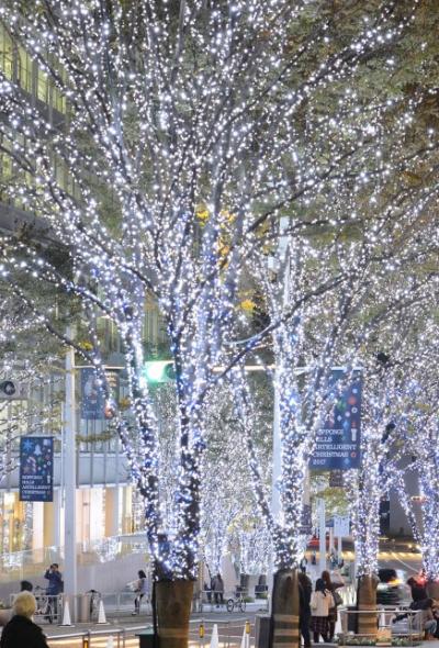 롯폰기 힐즈 크리스마스 2020 (크리스마스 마켓)