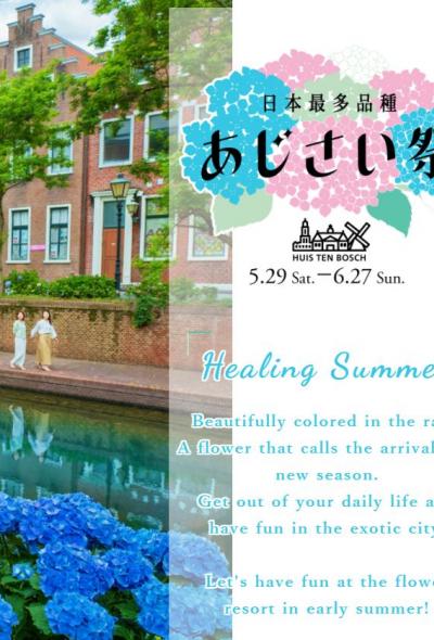 เทศกาลดอกไฮเดรนเยีย Huis Ten Bosch Hydrangea Festival (ハウステンボス あじさい祭) (นางาซากิi)