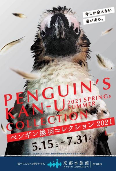 Penguin's Kan-U Collection at Kyoto Aquarium