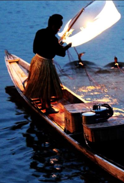 廣島三次的鵜飼:鸕鶿捕魚 450多年歷史的傳統夏日風物詩