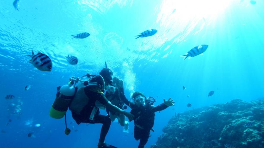 冲绳浮潜、潜水好地方Marine Support TIDE・残波(蓝洞海洋观光) - 潜水篇